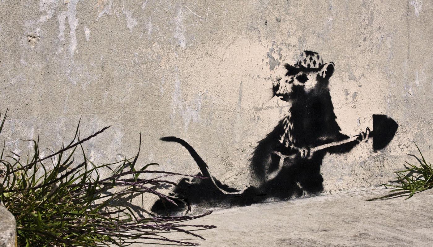 Image du film Faites le mur !
