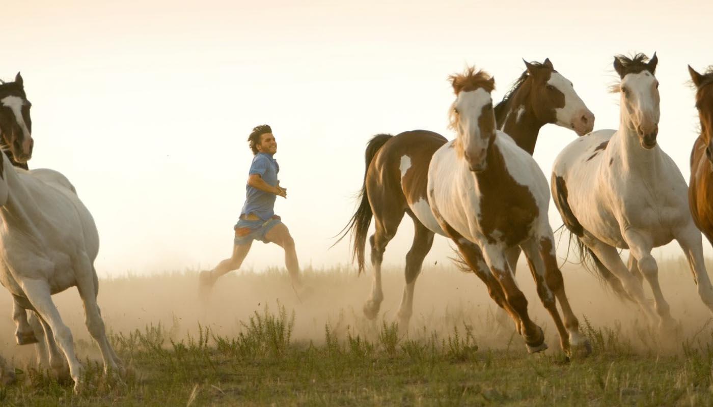 Image du film Into the Wild