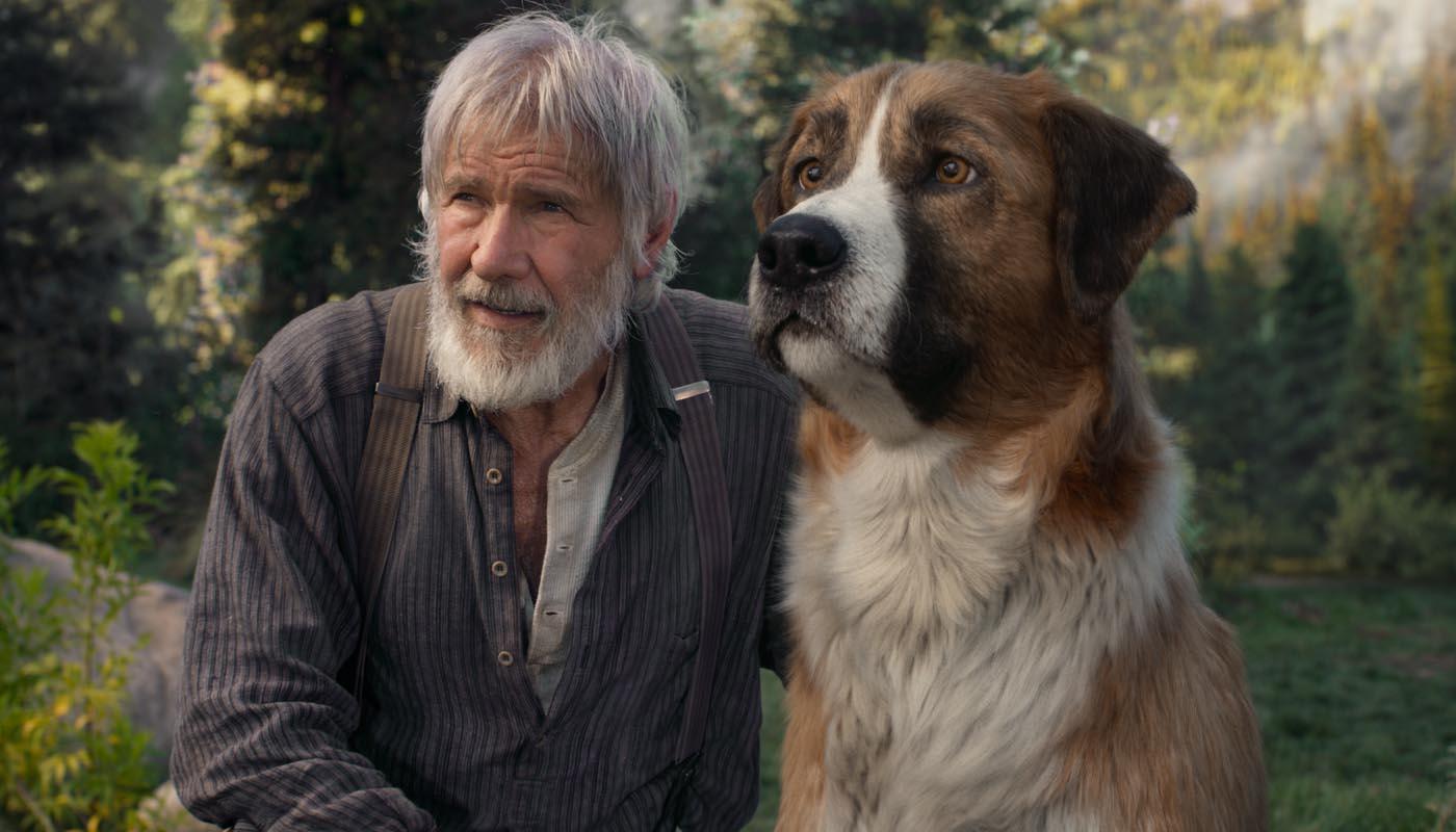 Image du film L'Appel de la forêt