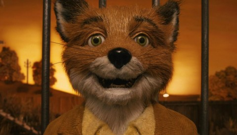 Image du film Fantastic Mr Fox